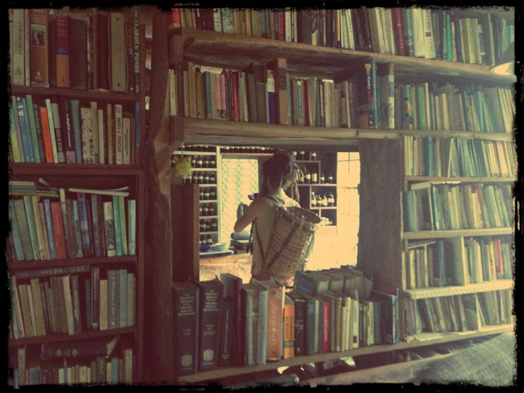 Dan in Joe Hollis Library