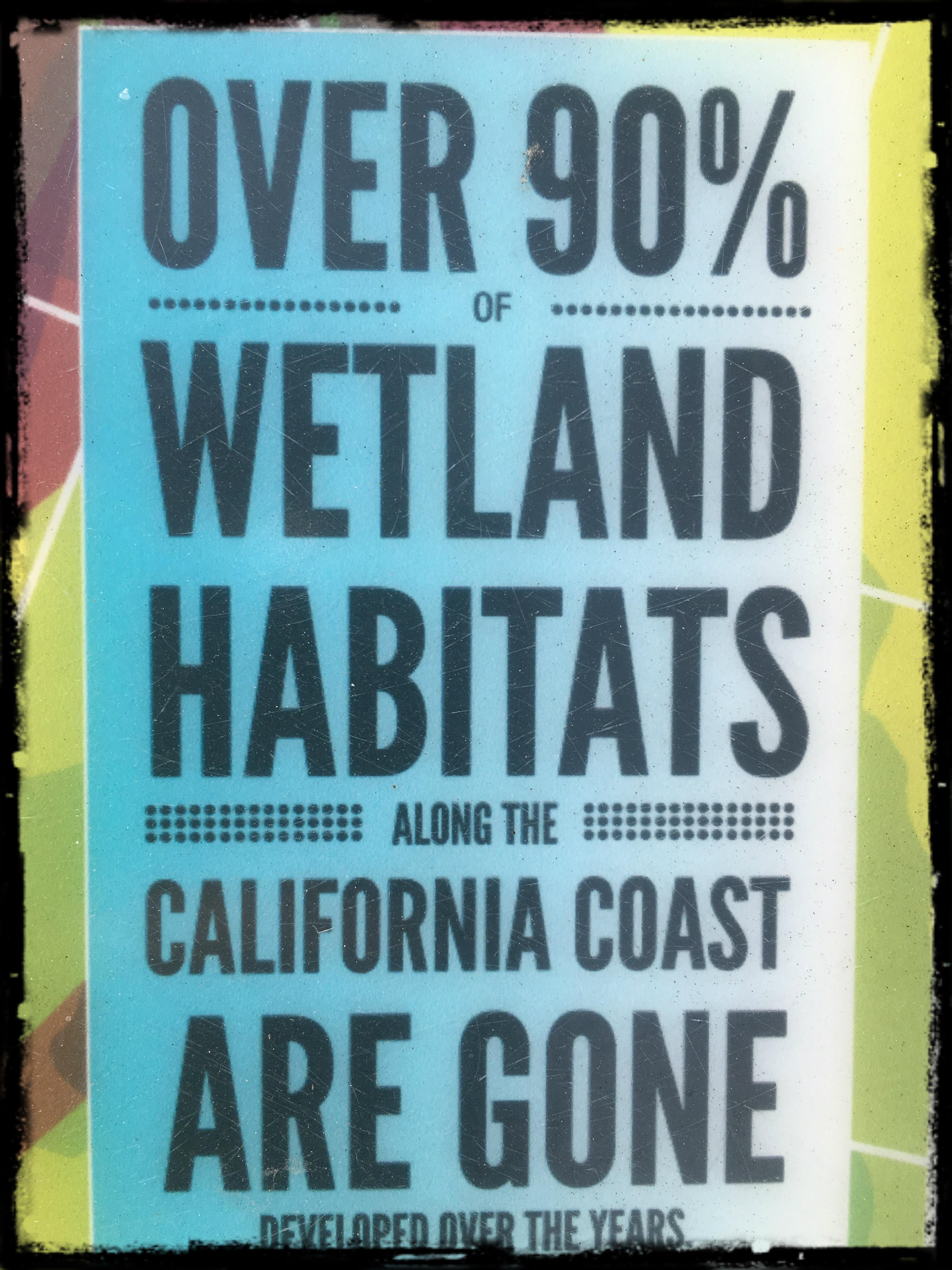 California Wetlands Habitat border